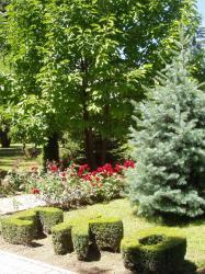 Nagrađen Zlatnom poveljom HRT-a, vrt OŠ Ljudevita Gaja, Nova gradiška