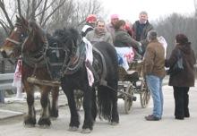 Zaprega konja posavaca kao dojmljiv izletnički prijevoz