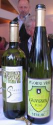 Neka od nagrađenih vina (Snimila Božica brkan / Acumen)