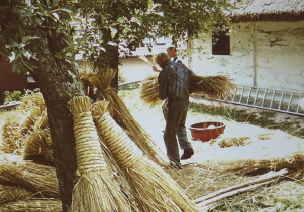 Pripremanje tzv. purana za sedlo krova (Snimila Spomenka Vlahović)