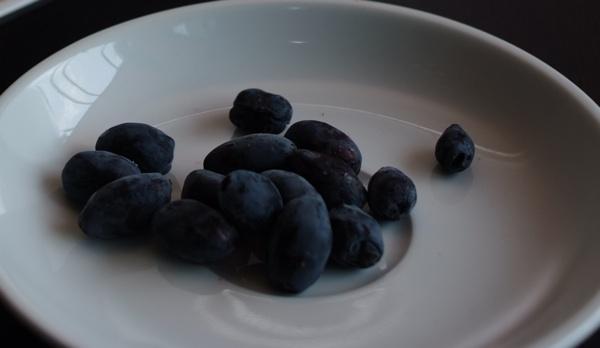 Tanjurić sibirskih bobica je pravo bogatstvo okusa i zdravlja (Snimila Marina Filipović Marinshe / Acumen)