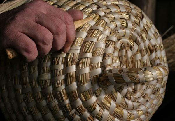 Što sve krije pčelinja košnica? (Fotografija Nikola Wolf)