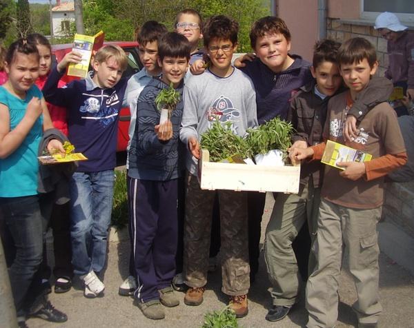 I najmlađi znaju što s presadnicama: područna osnovna škola Vrt na Krku (Fotografija HRT)