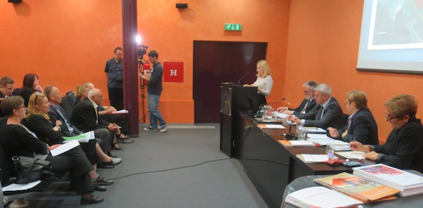 Marijana Petir i publika (Fotografija Miljenko Brezak / Živi selo)